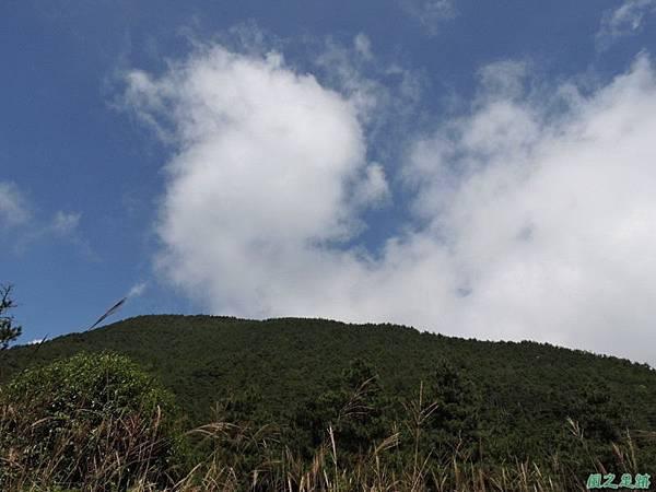 羅葉尾山20140907(128)