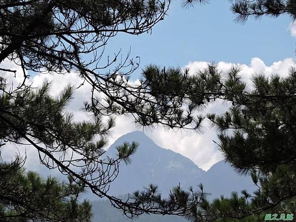 羅葉尾山20140907(132)