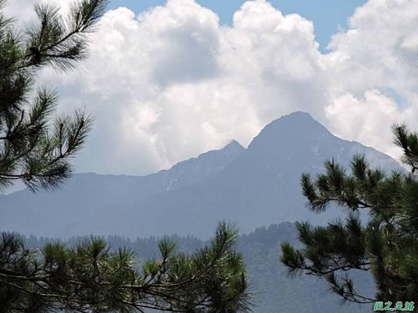 羅葉尾山20140907(133)