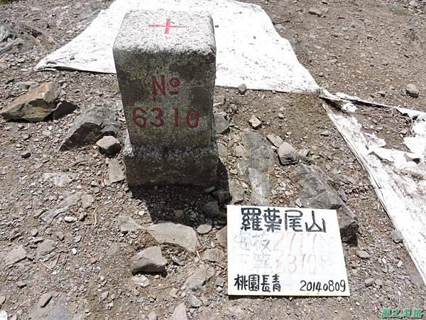 羅葉尾山20140907(142)