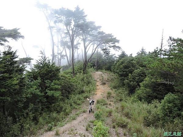羅葉尾山20140907(171)