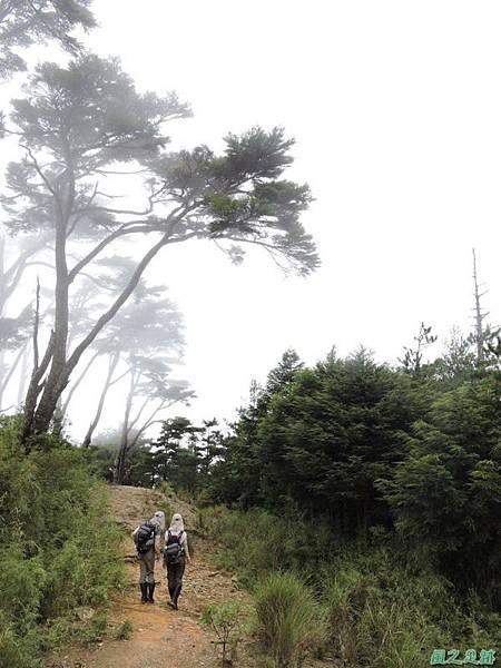 羅葉尾山20140907(172)