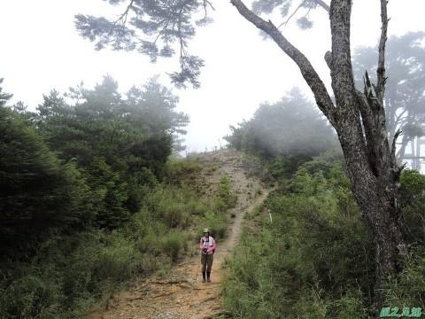 羅葉尾山20140907(173)