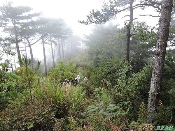 羅葉尾山20140907(178)