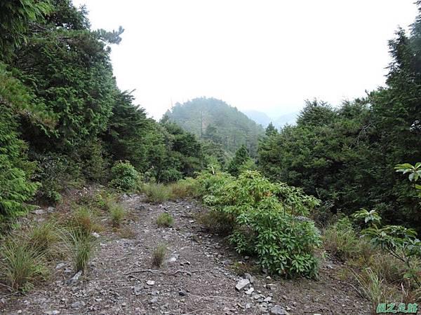 羅葉尾山20140907(180)