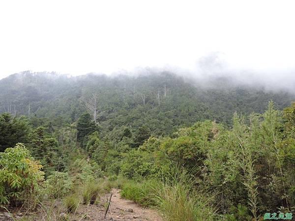 羅葉尾山20140907(181)