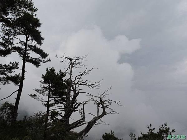 羅葉尾山20140907(184)