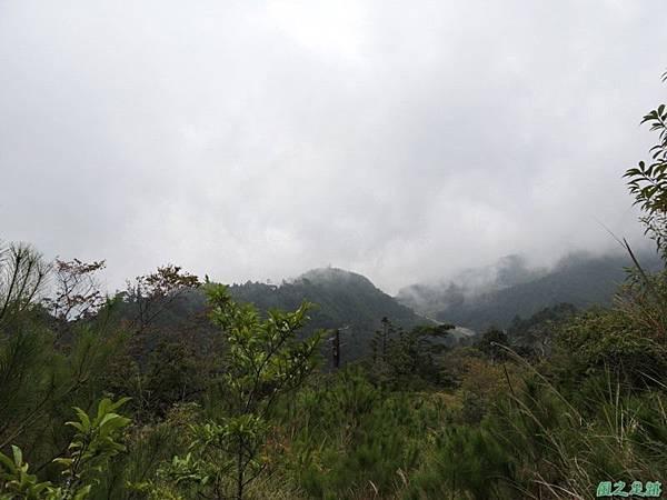 羅葉尾山20140907(185)