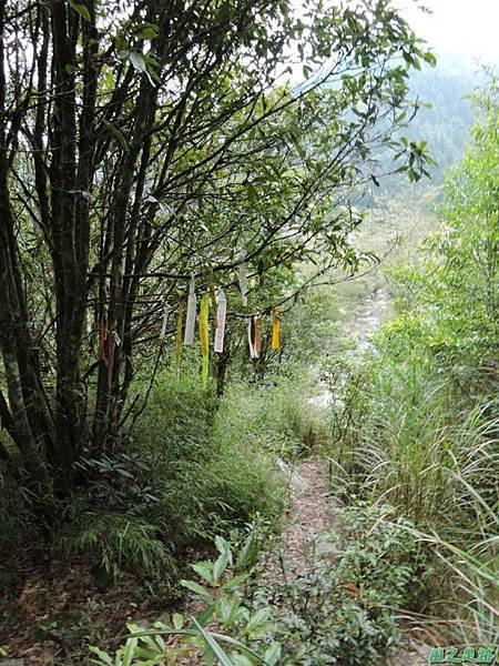 羅葉尾山20140907(188)