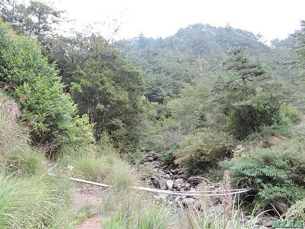 羅葉尾山20140907(189)