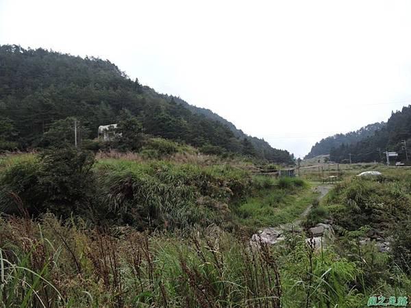 羅葉尾山20140907(190)