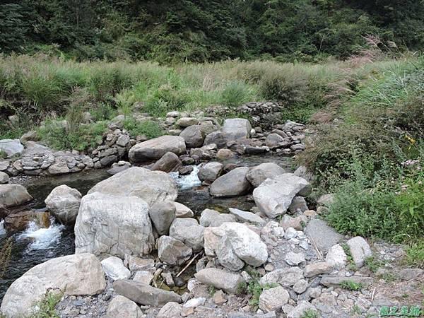 羅葉尾山20140907(191)