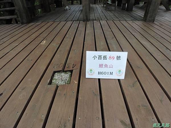 鯉魚山(小百岳)20140818