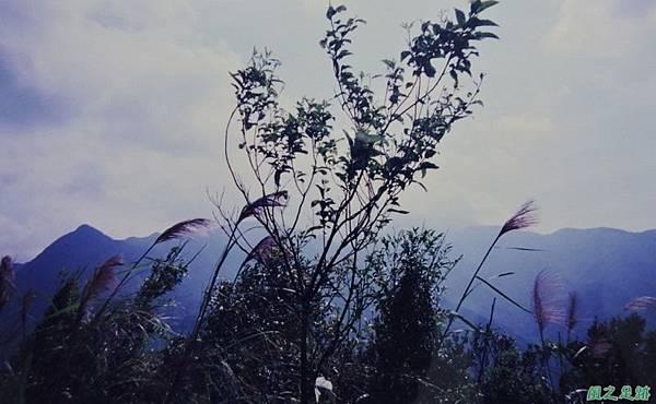 烏來向天湖山19971019(2)