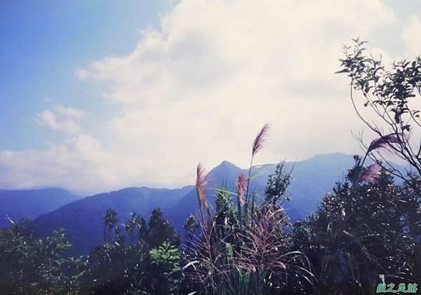 烏來向天湖山19971019(7)
