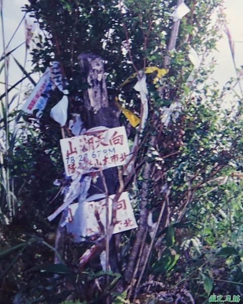 烏來向天湖山19971019(14)