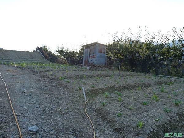 平岩駐在所20141011(5)