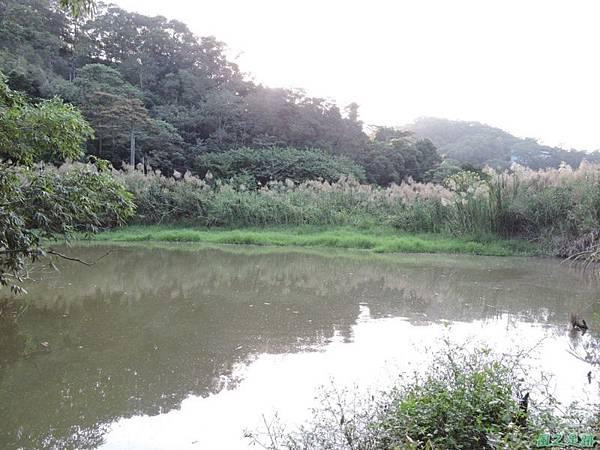 二寮神木(北埔山行)20141005(49)