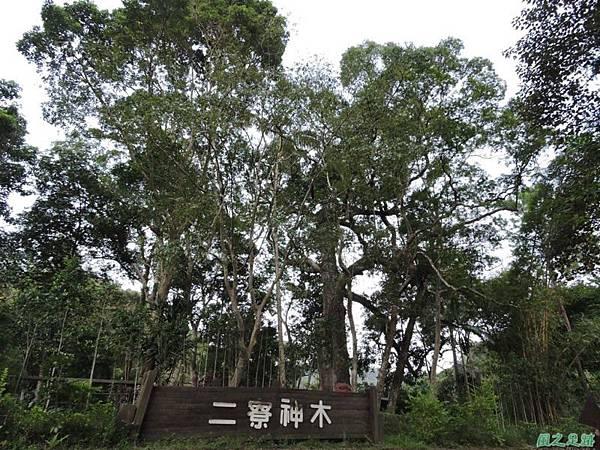 二寮神木(北埔山行)20141005(93)