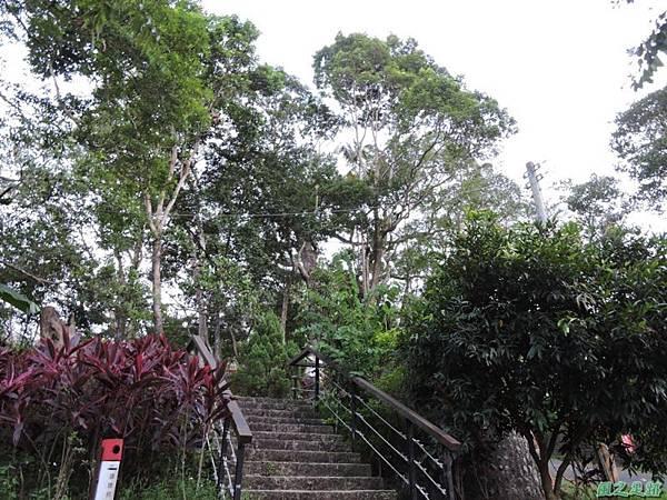 二寮神木(北埔山行)20141005(99)