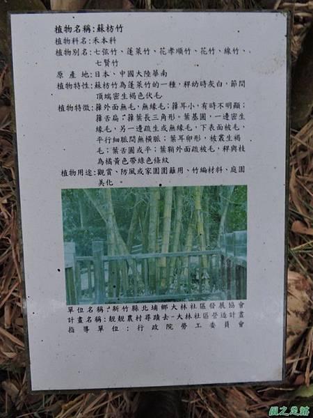 二寮神木(北埔山行)20141005(106)
