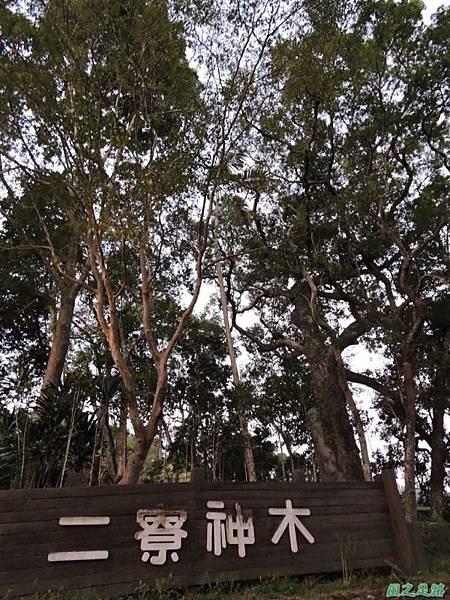 二寮神木(北埔山行)20141005(120)