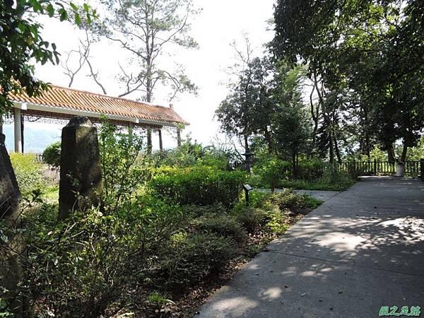 秀巒公園珍貴樹木20141018(7)