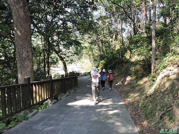 秀巒公園珍貴樹木20141018(8)