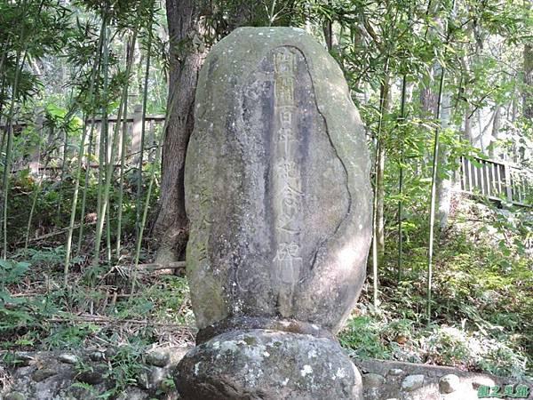秀巒公園珍貴樹木20141018(19)