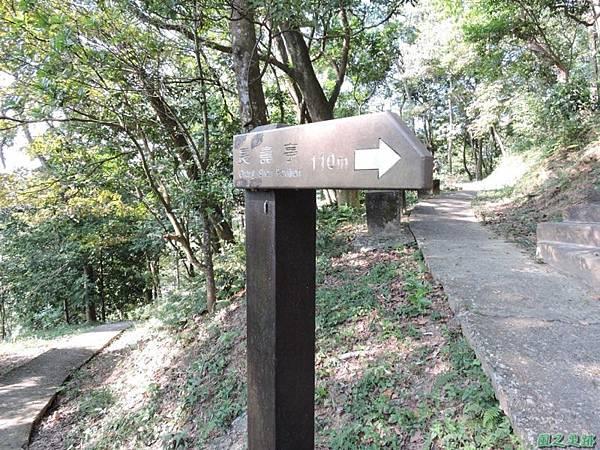 秀巒公園珍貴樹木20141018(21)