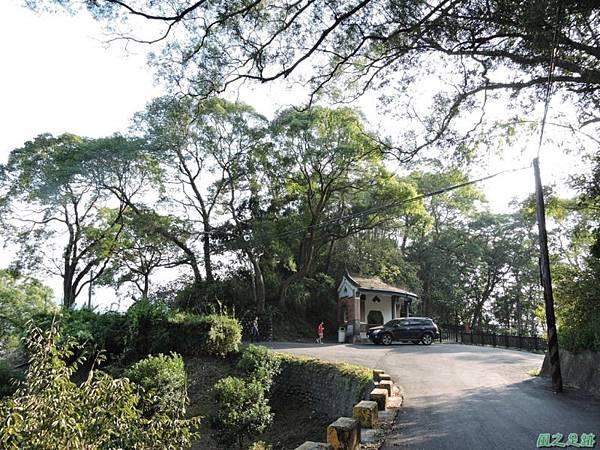 秀巒公園珍貴樹木20141018(29)