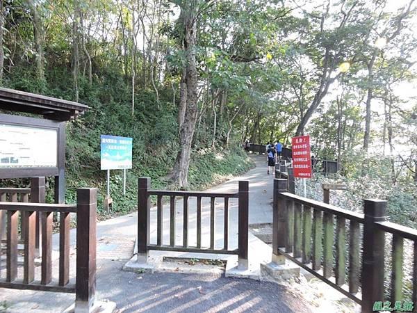 秀巒公園珍貴樹木20141018(31)