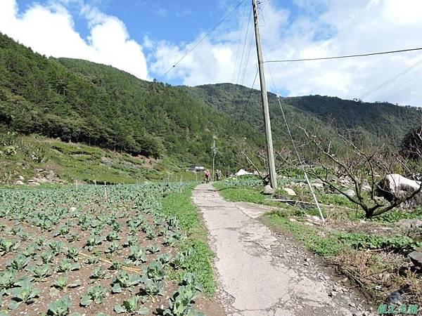 馬武霸山20141011 (20)