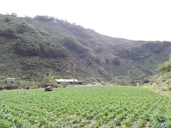 馬武霸山20141011 (22)