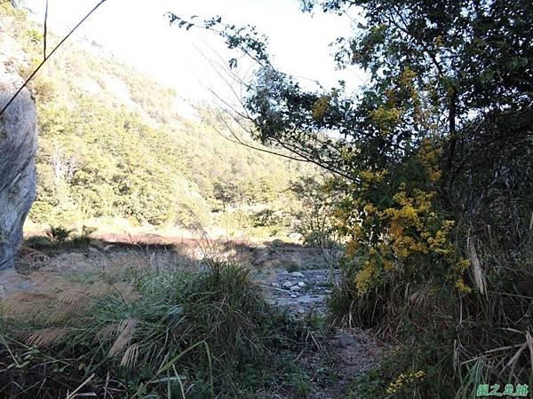 馬武佐野郡山20141102(5)