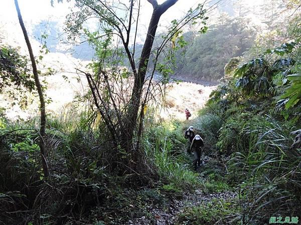 馬武佐野郡山20141102(11)