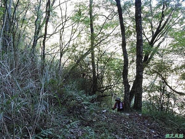 馬武佐野郡山20141102(13)