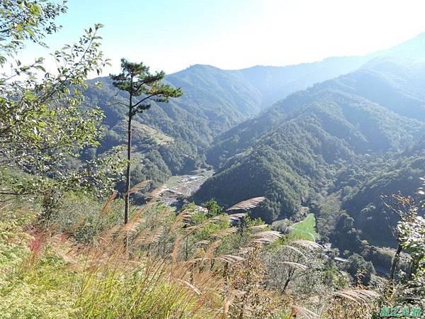 馬武佐野郡山20141102(19)