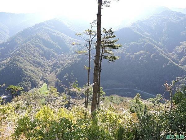 馬武佐野郡山20141102(22)