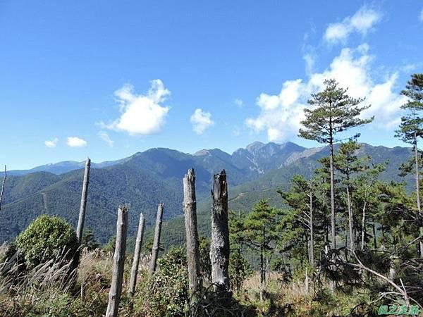 馬武佐野郡山20141102(69)