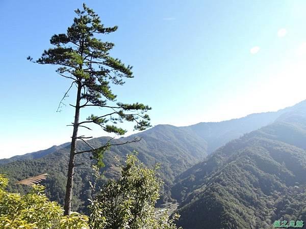 馬武佐野郡山20141102(23)
