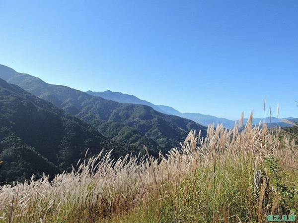 馬武佐野郡山20141102(26)