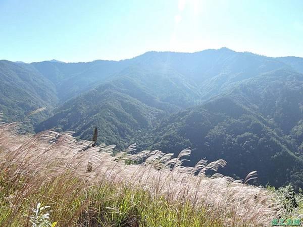 馬武佐野郡山20141102(30)