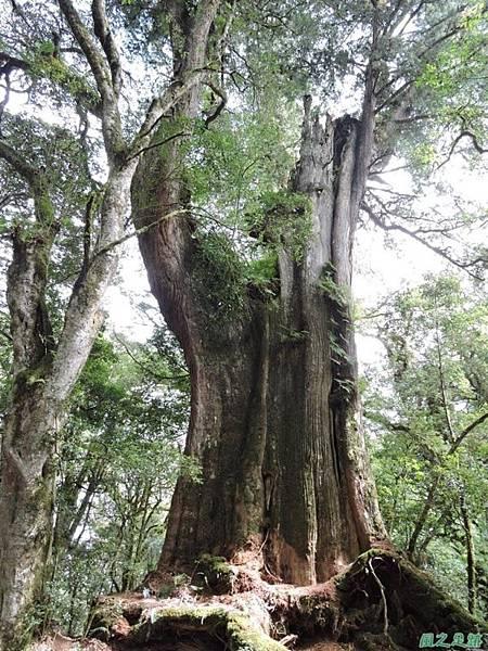 馬武佐野郡山20141102(132)
