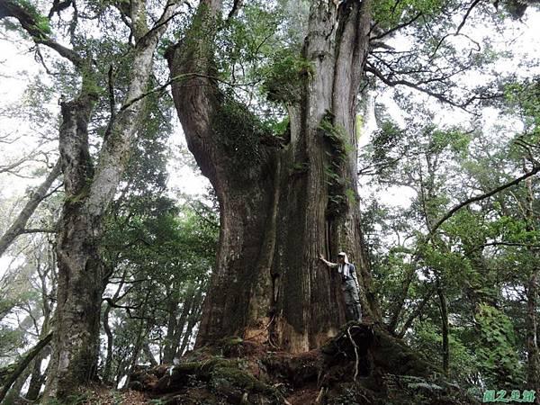 馬武佐野郡山20141102(135)