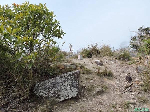 馬武佐野郡山20141102(163)