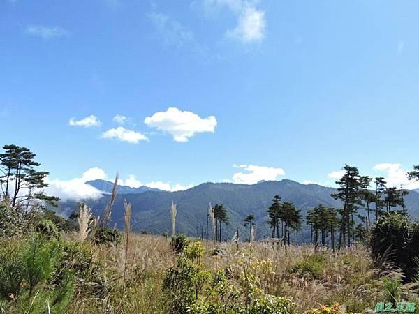 馬武佐野郡山20141102(106)