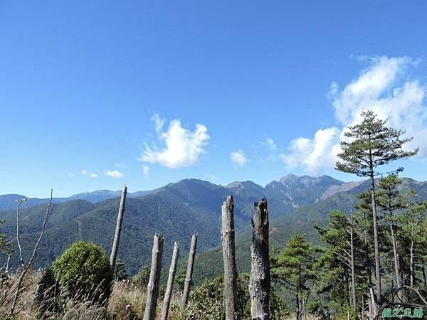 馬武佐野郡山20141102(64)