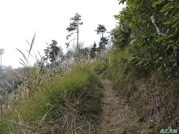 馬武佐野郡山20141102(174)