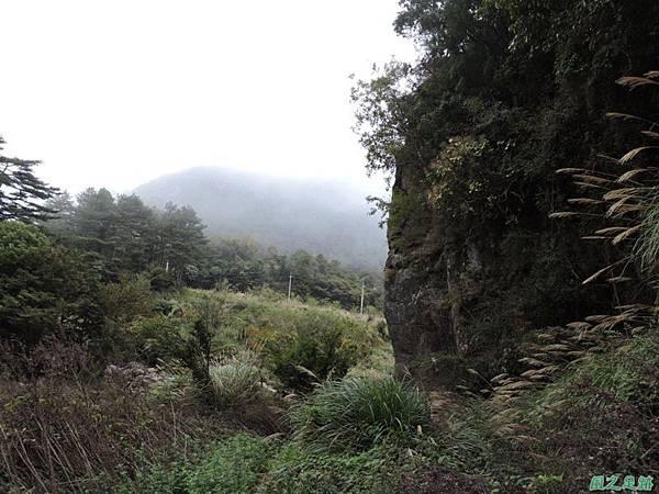 馬武佐野郡山20141102(183)